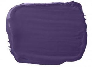 Bright Accents Purple